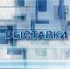 Выставки в Басьяновском